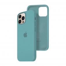 Силиконовый чехол c закрытым низом Apple Silicone Case для iPhone 13 Pro Max Cactus