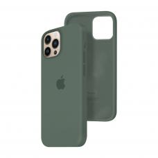 Силиконовый чехол c закрытым низом Apple Silicone Case для iPhone 13 Pro Max Pine Green