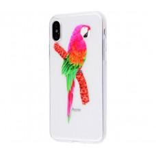 Чехол для iPhone X попугай