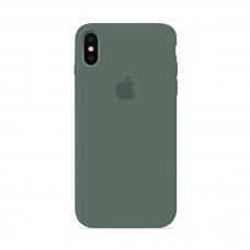 Силиконовый чехол Apple Silicone Case Pine Green для iPhone Xs Max