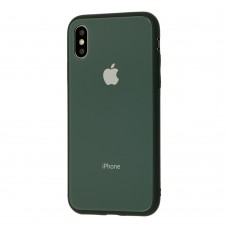 Чехол для iPhone X/Xs Glass Pastel Color Logo Forest Green