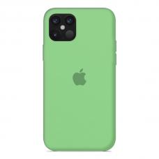 Силиконовый чехол Apple Silicone Case Salad для iPhone 12 Mini